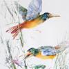 Картина акварелью «Две ЖёлтыеПтицы»