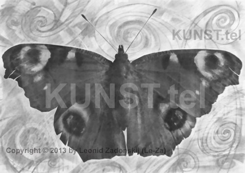 Charcoal drawing of butterfly. (Le-Za)